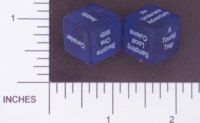 Dice : NON NUMBERED TRANSLUCENT ROUNDED SOLID DESTINY DICE TROPICAL 01