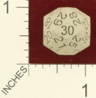 Dice : MINT24 SHAPEWAYS DIZINGOF 30 SIDES DIE D30 01