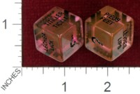 Dice : MINT38 UNKNOWN ADULT