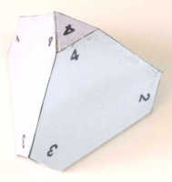 Dice : PAPER D4 MY DESIGN NEW STYLE NUMBERED