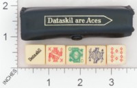 Dice : MINT1 DATASKIL 01