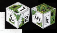 Dice : PAPER D06 Q WORKSHOP CHIP MY COLORATION 01