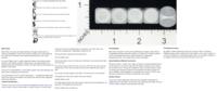Dice : MINT18 TRADERSEDGEDICE DOT COM BLACK SWAN 01